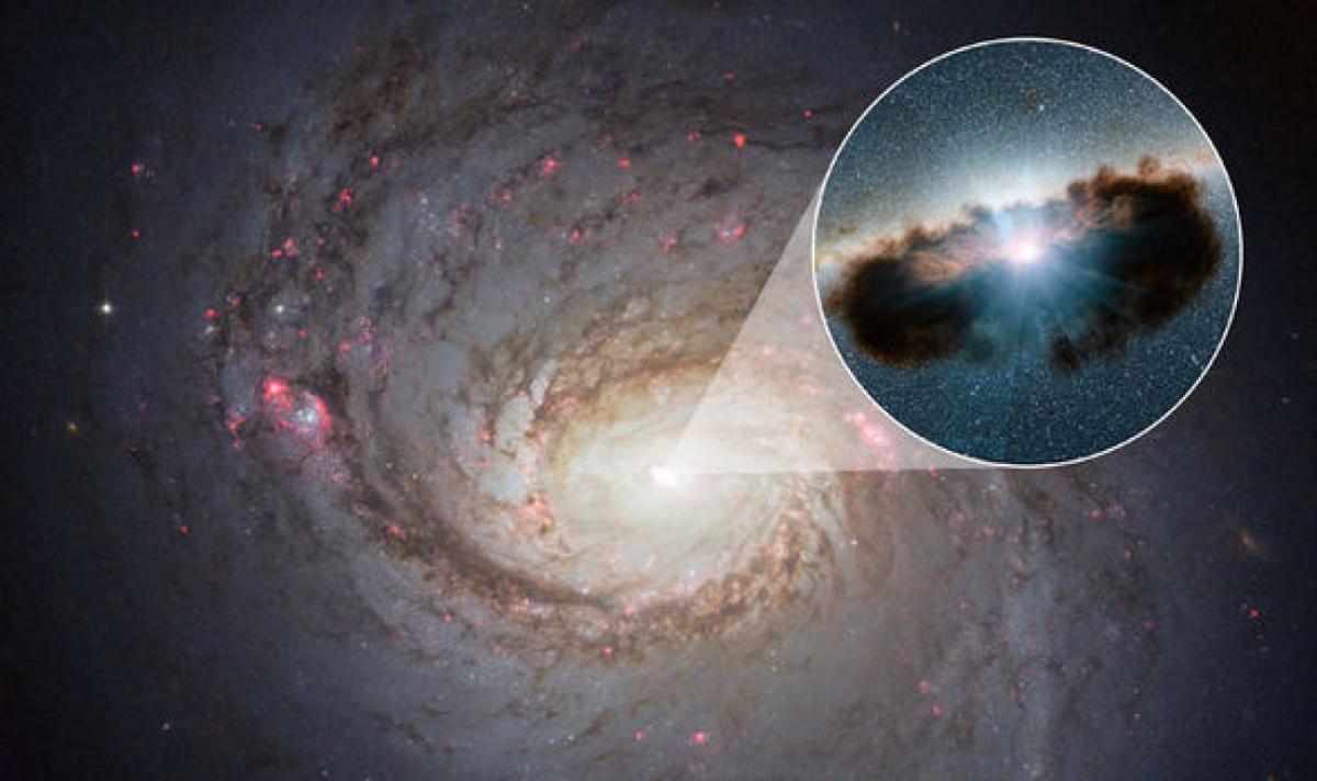 пока фото кротовых нор с телескопа в космосе одном